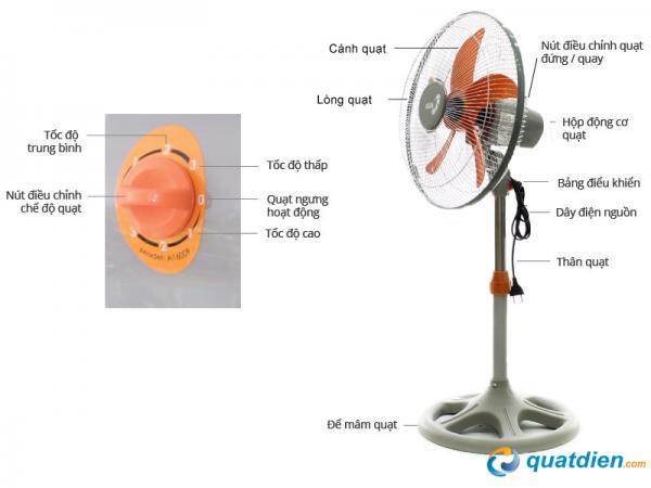 quat-lung-asia-a16009