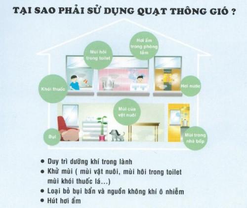 558-quat_thong_gio