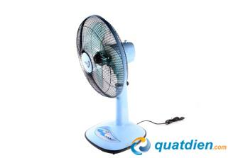 quat-lung-asia-a16001-4