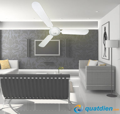 quat-tran-asia-j48003-1