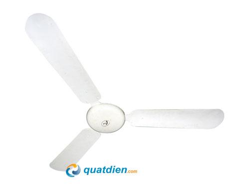 quat-tran-Asia